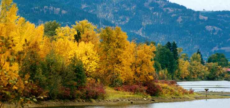 A fall view along the Pend Oreille Scenic Byway