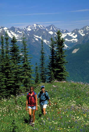 Hikers in the Selkirk Mountains