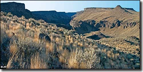 In the Owyhee Canyonlands