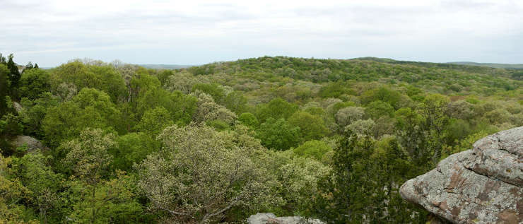 A view in the heart of Shawnee National Forest