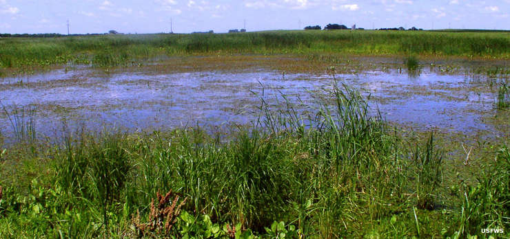 Iowa Wetland Management District