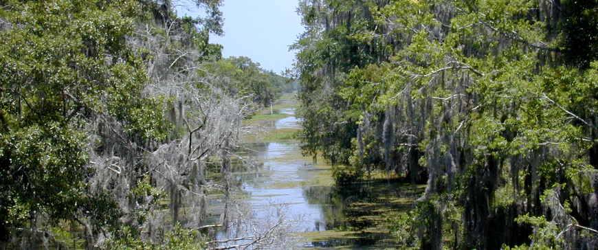 Barataria Preserve, part of the Jean Lafitte National Historical Park and Preserve