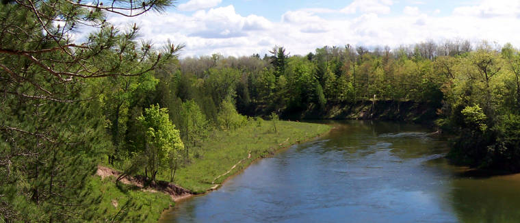 A view along the Manistee River