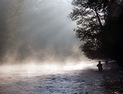 Fishing the Pere Marquette National Scenic River