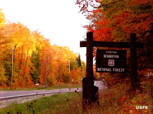 Sign marking a boundary of Hiawatha National Forest, surrounded by large stands of multicolored trees in the fall