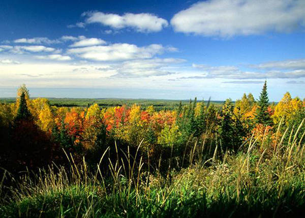 View from an overlook along the Superior National Forest Scenic Byway