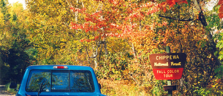 Chippewa National Forest, along the Fall Color Tour route
