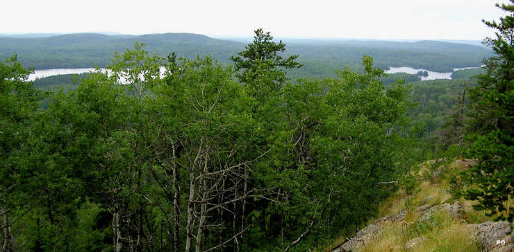 Looking down from the top of the highest natural point in Minnesota
