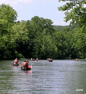 Canoers paddling the Eleven Point River