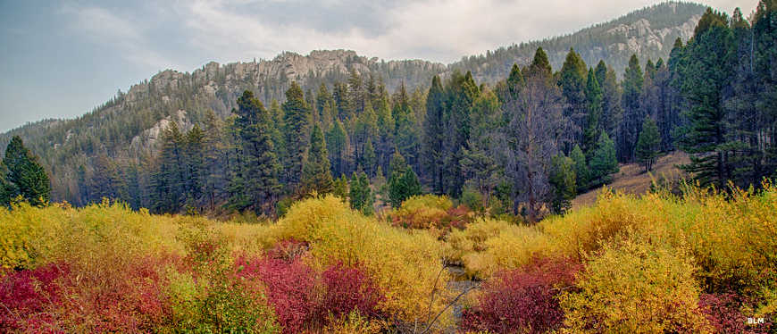 A fall view with the trees and brush in vivid colors in Humbug Spires Wilderness Study Area