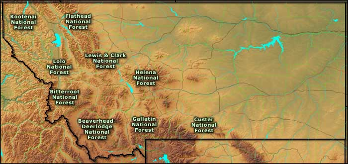 National Forests in Montana
