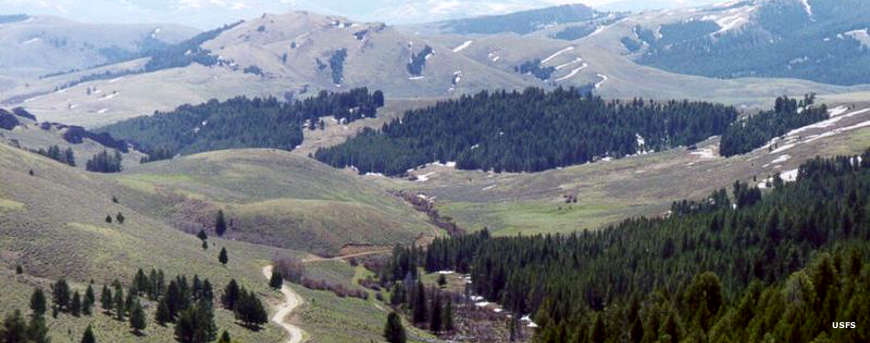 Looking eastward into Montana from the summit of Lemhi Pass