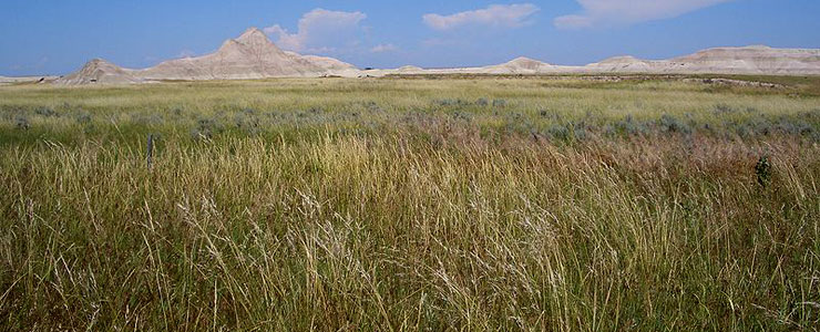 Oglala National Grassland