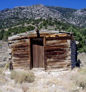 An old log homestead in Goshute Canyon Wilderness