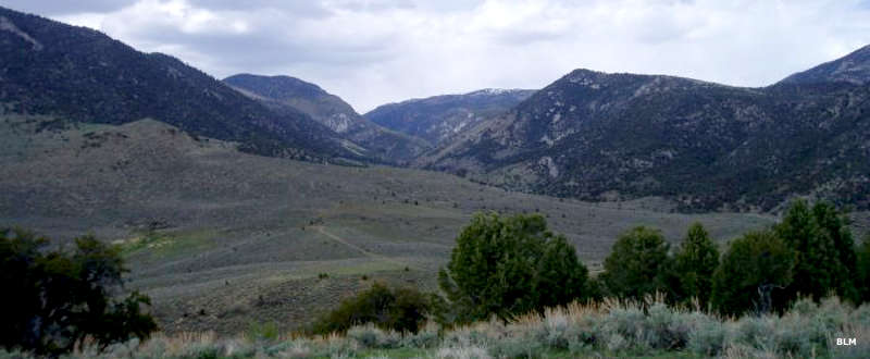 View of trees and meadows along a hiking trail in Highland Ridge Wilderness