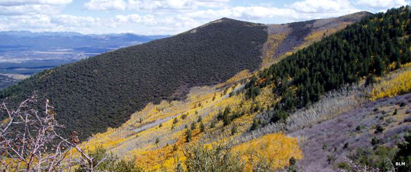 Looking across the slopes with aspens in fall color