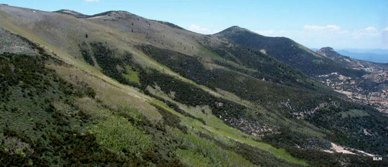 An aerial view across the side of the range in Parsnip Peak Wilderness