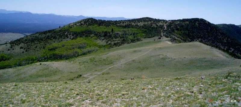 A view of a trail at the top of the hill in Parsnip Peak Wilderness