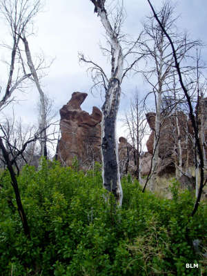 Rock formations in White Rock Range Wilderness