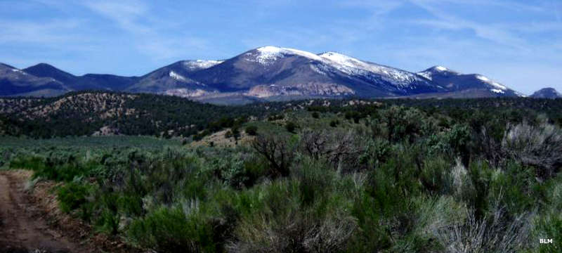 Looking across the desert to a snow-capped peak