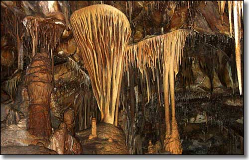 Formations in Lehman Cave