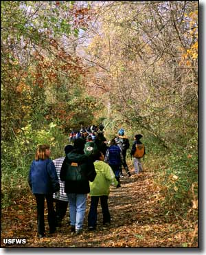 Children on a birding expedition at Edwin B. Forsythe National Wildlife Refuge