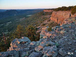 A view in the Chamisa Wilderness Study Area