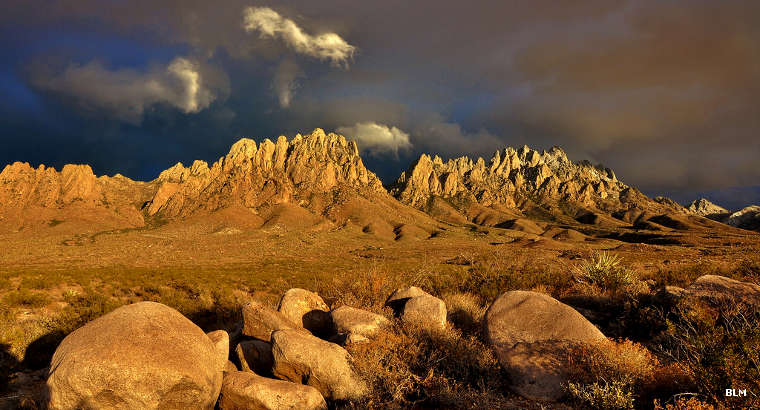 A view of the Organ Mountains