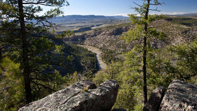 A view in the Rio Chama Wilderness Study Area