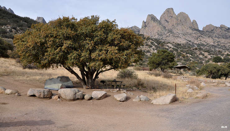 View of a campsite in Aguirre Spring Campground