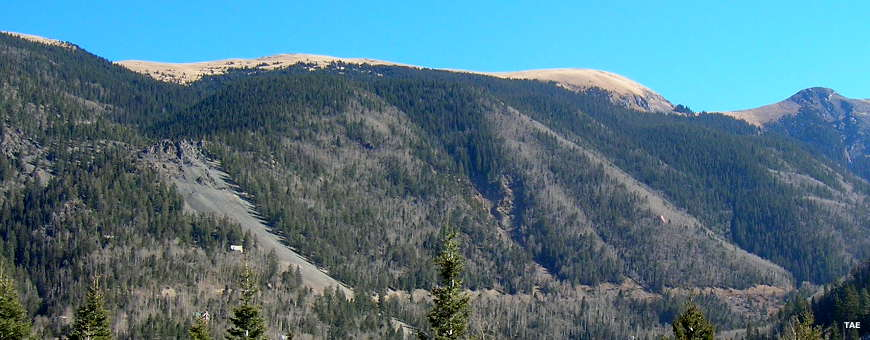 Looking east across the valley to the north ridge line of Wheeler Peak