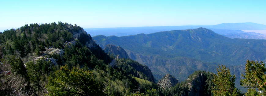 Looking down into the Sandia Mountains in Cibola National Forest