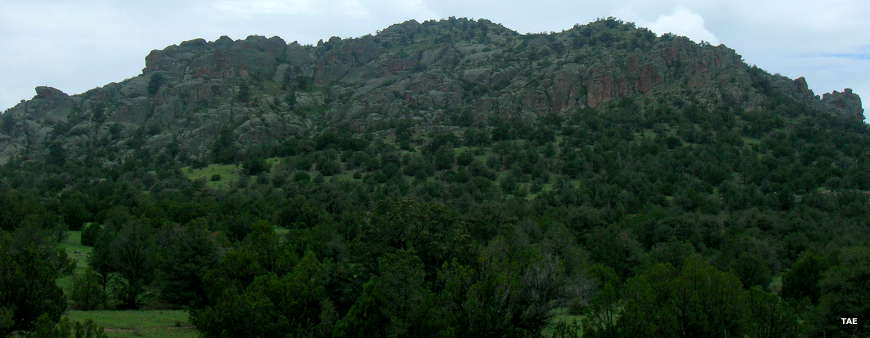Typical view in the northwestern part of Gila National Forest