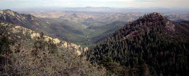 The view east from Emory Pass on the Geronimo Trail Scenic Byway