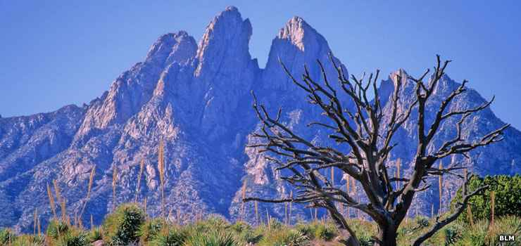 The Organ Mountains east of El Camino Real Historic Byway