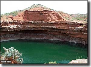 A sinkhole in Salt Creek Wilderness