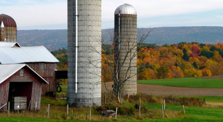 Farm scene in Brunswick, New York