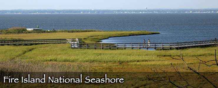 Boardwalks line the marsh on the north side of Fire Island National Seashore