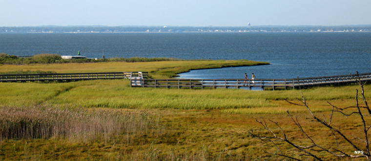 Boardwalks across the salt marsh at Fire Island National Seashore