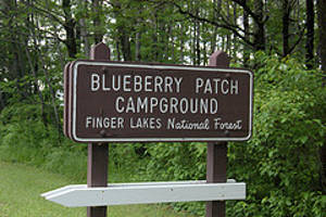 Sign marking the entrance to Blueberry Patch Campground