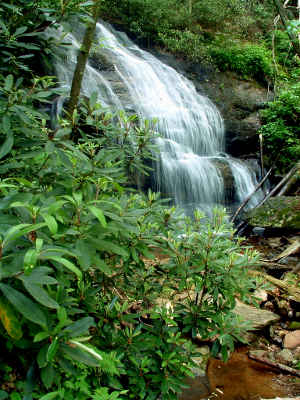 A waterfall in Pisgah National Forest