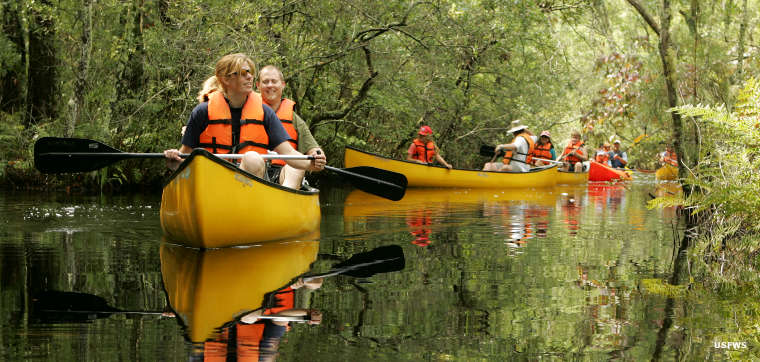 Canoers at Alligator River National wildlife Refuge