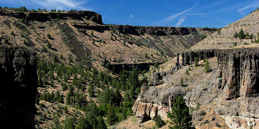 Alder Creek Canyon on Ochoco National Forest