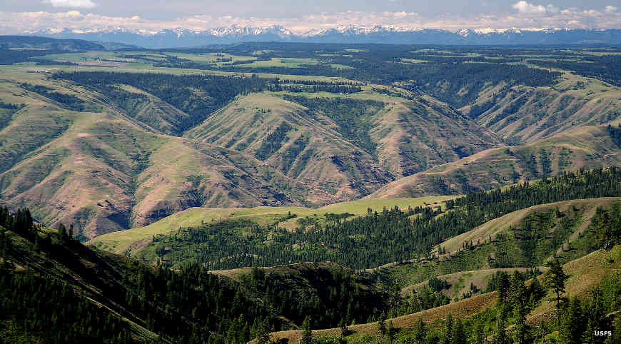 A view across the Grande Ronde River Canyon to the Elkhorn Mountains on Umatilla National Forest