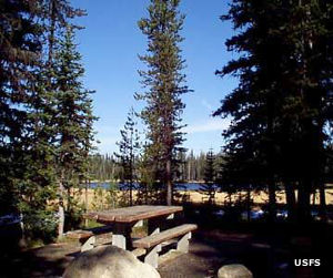 A view across a campsite at the Grande Ronde Lake Campground