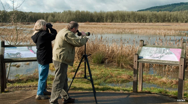 Bird watchers at William L. Finley National Wildlife Refuge