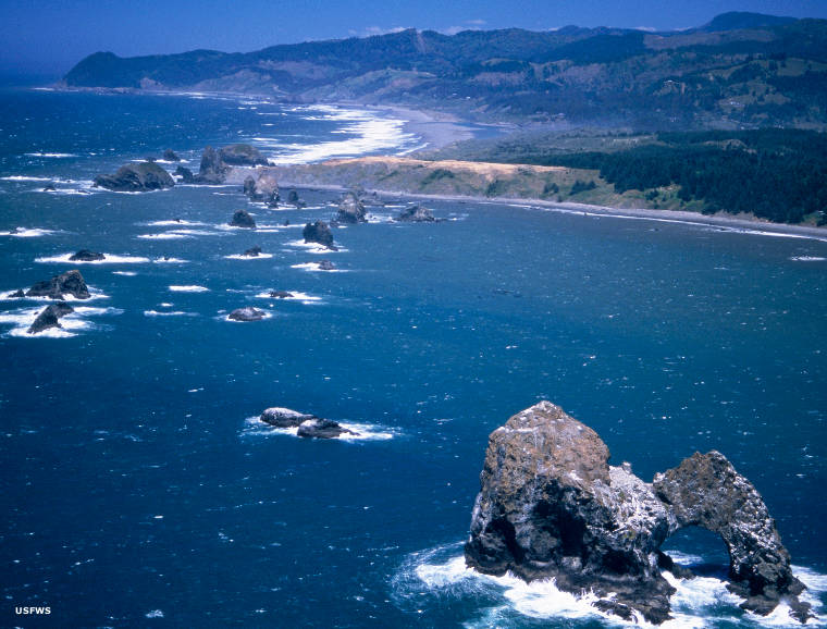 Oregon Islands Wilderness
