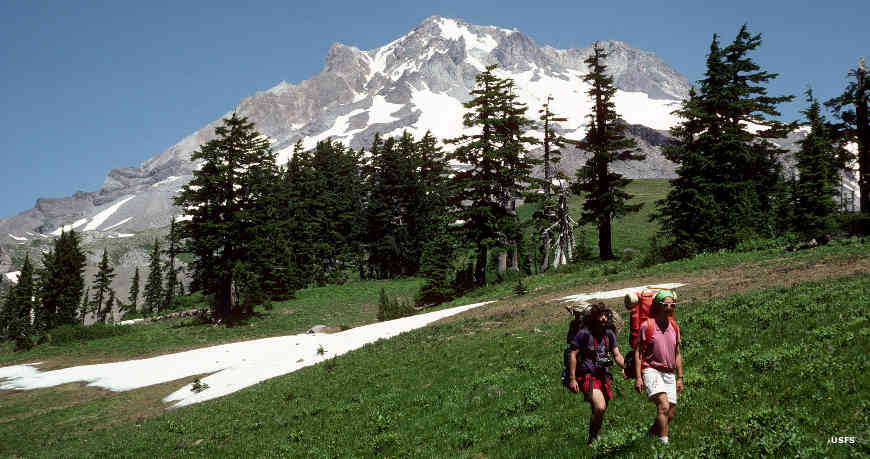 A view in Mount Hood Wilderness