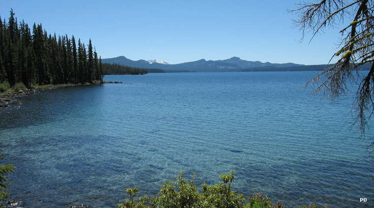 A view of Waldo Lake