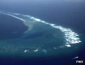 An aerial view of Kingman Reef